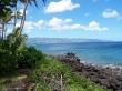 Waimea Point